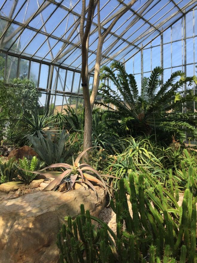 Botanic Garden E3
