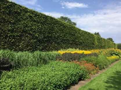 Royal Botanic Garden Edinburgh. The photos were taken by me in 2019.